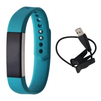 Fitbit Alta Series Fitness Wristband Activity Tracker - Silver/Teal - Large (US)